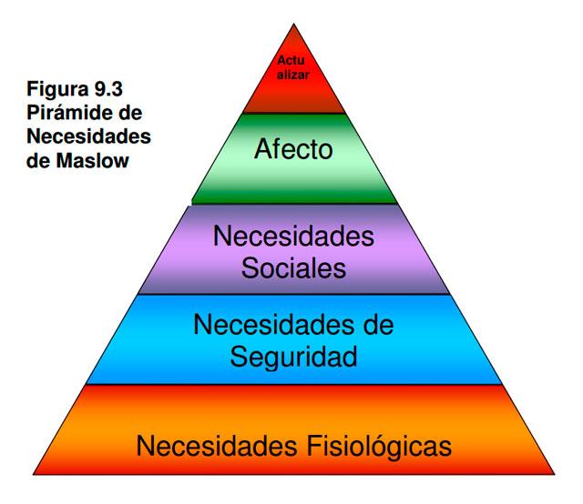 Pirámide de necesidades de Maslow en el Entorno laboral saludable