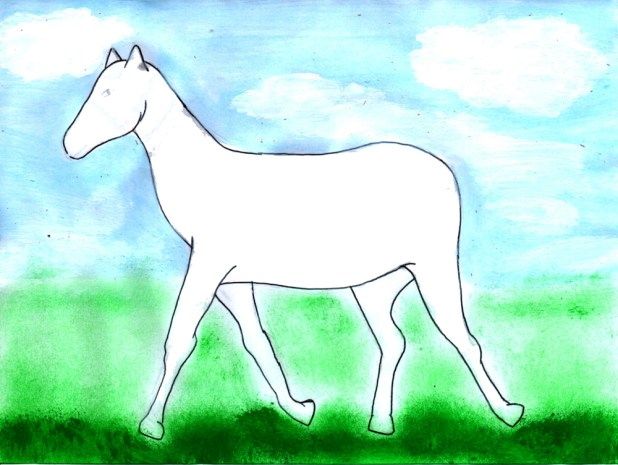 noemi_colores_caballo