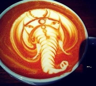 Coffee Art Elefante