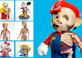 Anatomía realista de nuestros muñecos favoritos.