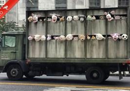 Original Protesta del Artista Urbano Banksy en Nueva York.