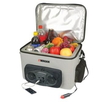Gadgets de Playa - Nevera portátil con radio