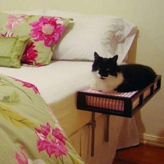 Cama supletoria para gatos