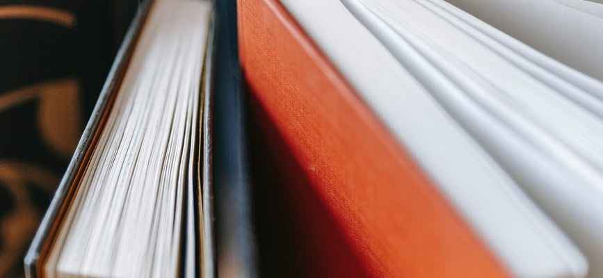 selective focus of variety of books