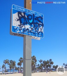 Venice Beach - CA