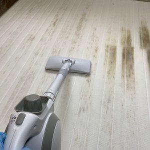 マットレスのカビの除去。すのこベッドから移ったカビ汚れを漂白してキレイに。