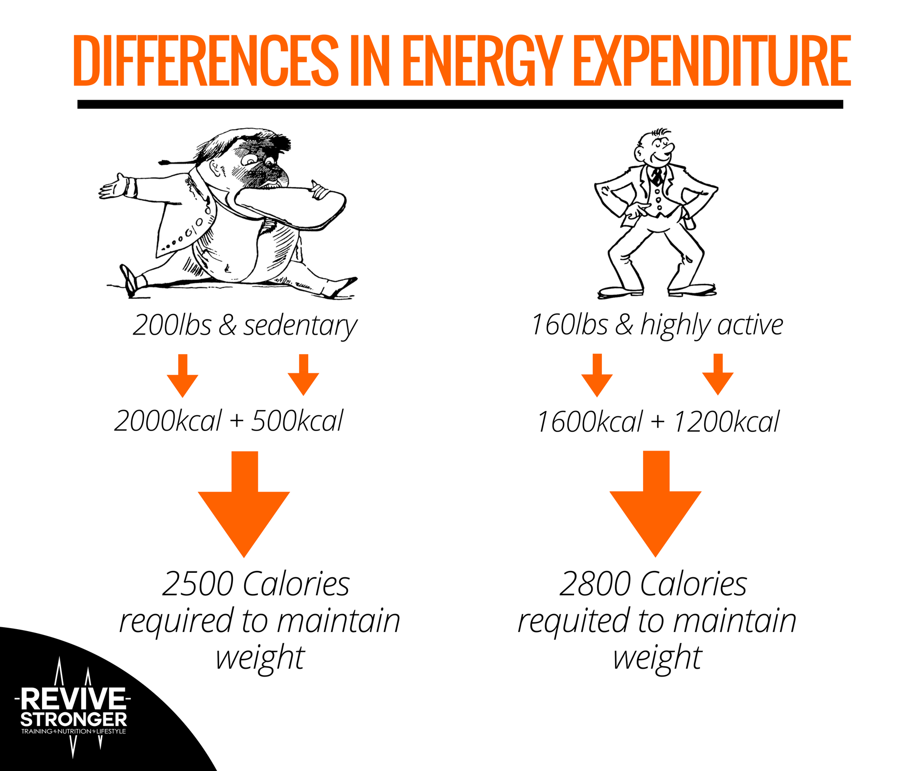 The Calorie Deficit Sweet Spot Revive Stronger