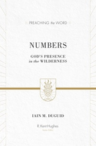 Duguid's Numbers Commentary