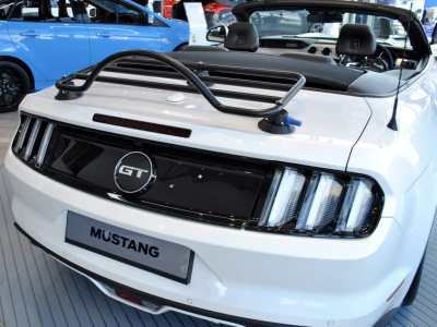 Ford Mustang Convertible Luggage Rack No Clamps No