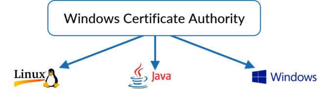 Extend Microsoft Certificate Authority – Revocent