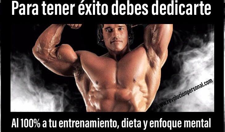 Las 80 Mejores Frases De Motivación Para El Gym