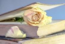 libros sant jordi