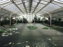 Botanischer Garten München - Nymphenburg