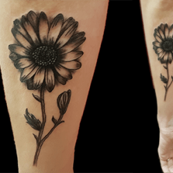 Daisy Tattoo by Dana, Langley Tattoo