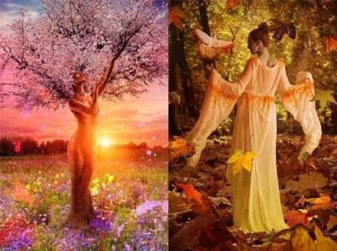 Méditation de la Fleur de vie le jour de l'équinoxe d'automne (lundi 23 septembre à 9h50)
