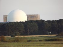 Sizewell nuclear power station as seen from Minsmere nature reserve