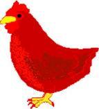 Little_red_hen_1