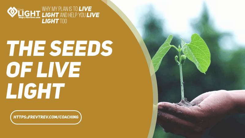 seeds of live light