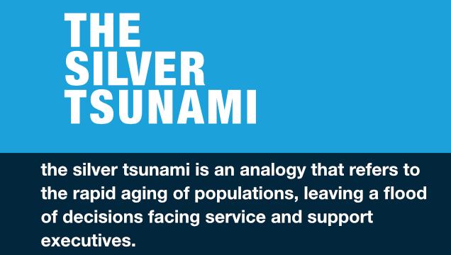 BLOG/INFOGRAPHIC – The Silver Tsunami