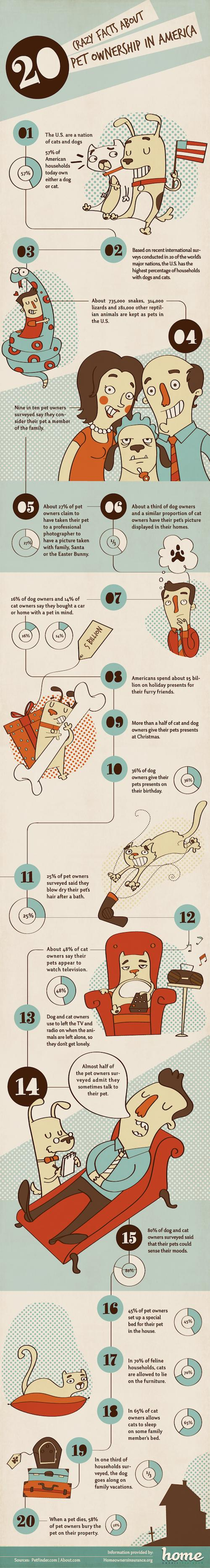 pets-infographic-facts-about-pet-owners.