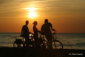 Rewal_Bike_System (20)
