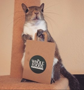 wholefoodsgiftcard