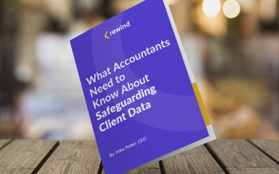What Accountants Need to Know About Safeguarding Client Data