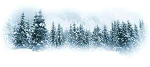 treesBG1