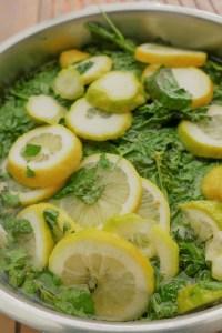 Zitronenmelissesirup herstellen
