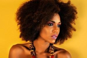 Carolyn Désert, Miss Haiti 2014,