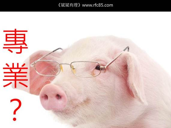 豬一樣的隊友