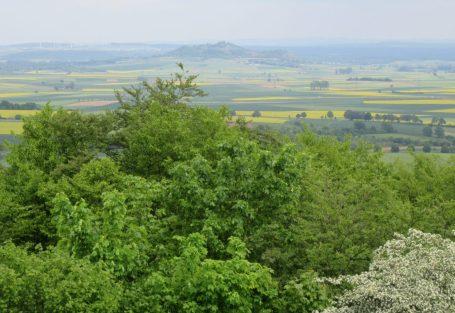 Blick vom Frauenberg aus nach Amöneburg