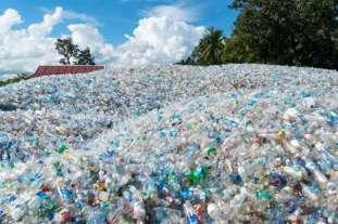 Field of used plastic bottles