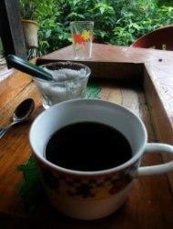 Venezuela Los Nevades to Barinas Hike - organic coffee farm
