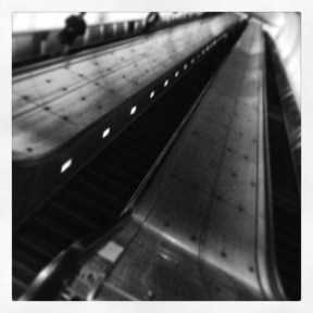 IMG_0794