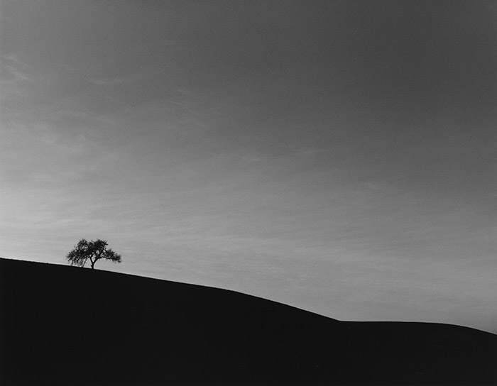Lone Oak 1985 Edna Bullock ©Bullock Family Photography LLC