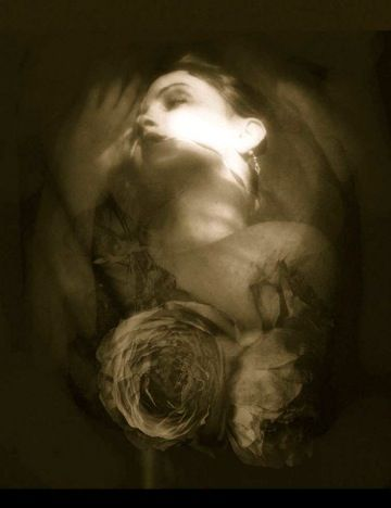 I Take Refuge in Roses © Josephine Sacabo