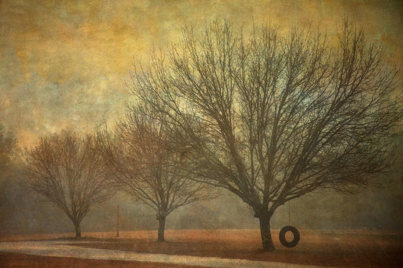 Winter © Vicki Wilson Hunt