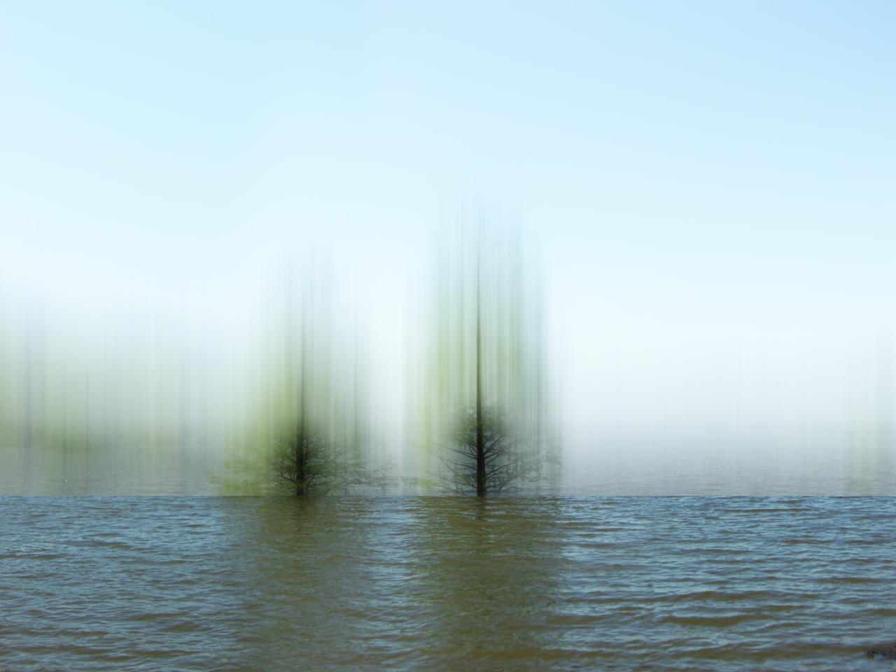 Whetting the Waters © Ellen Jantzen