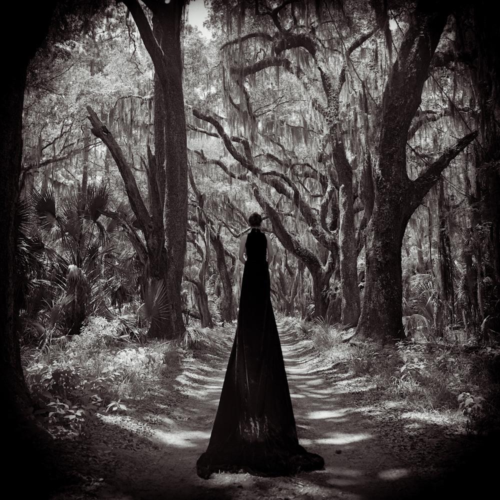 o_Black Velvet-1