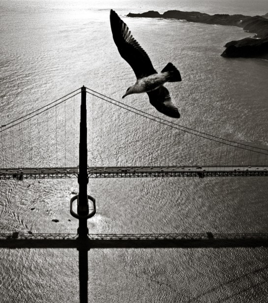 San Francisco Bay Bridge © Fred Lyon