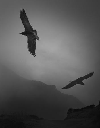 Odin's Cove 3 © Beth Moon