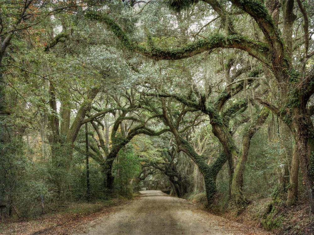 Wilderness Arch © Vicki Hunt