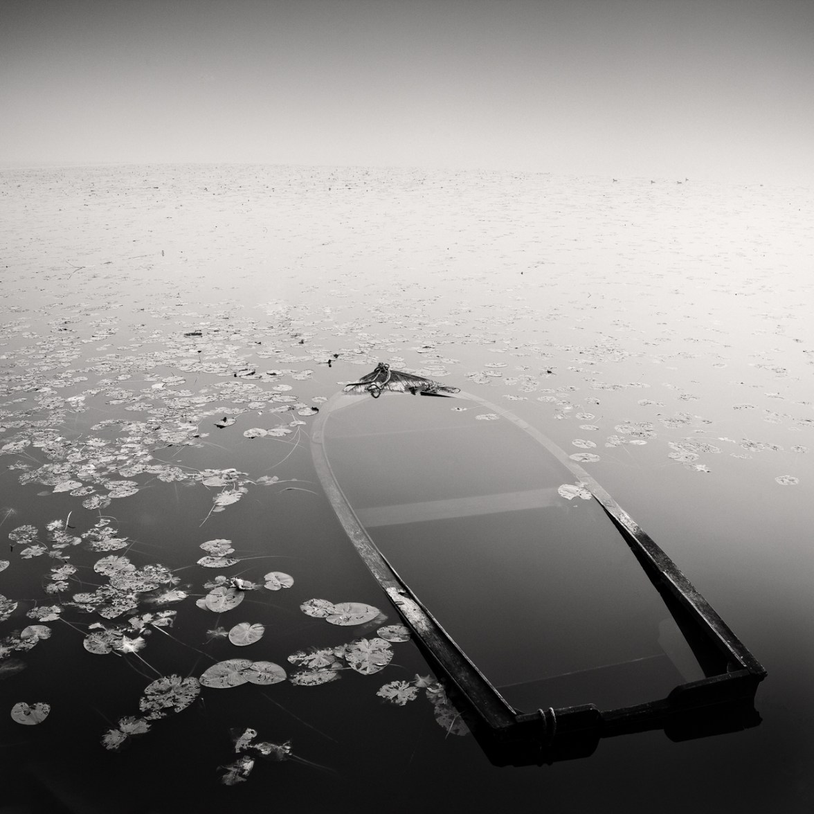 Submerged,2013, © Frang Dushaj