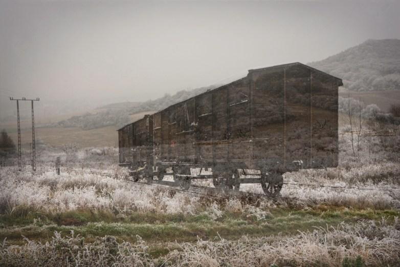 Cattle Car/Countryside © Keron Psillas