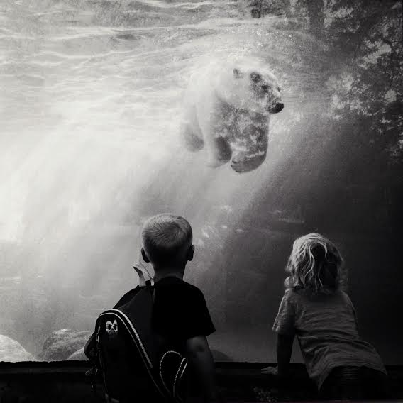 Wonder © Angie McMonigal