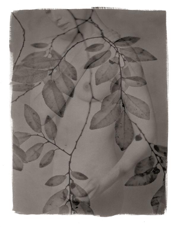 I have so little to offer © Brigitte Carnochan