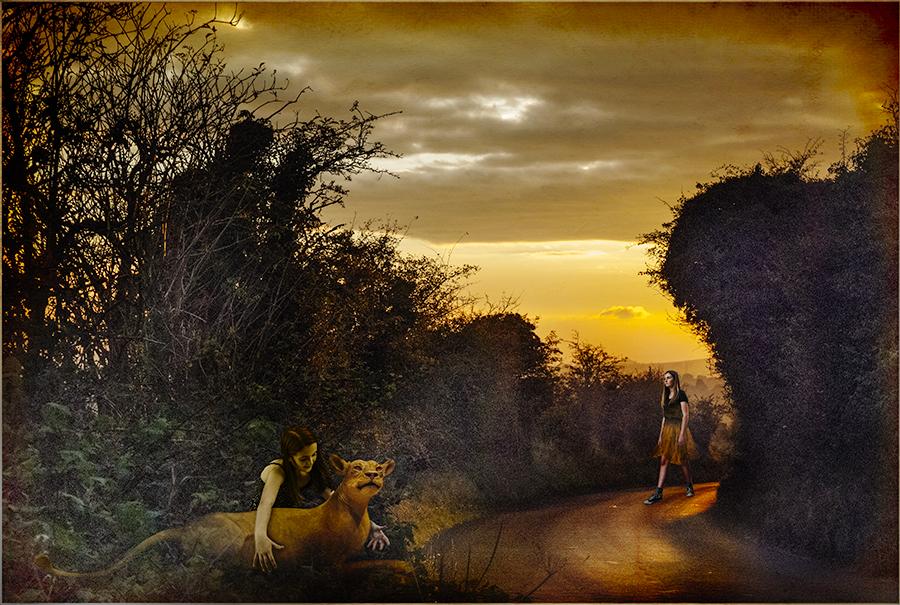 Avebury Sunset © Fran Forman