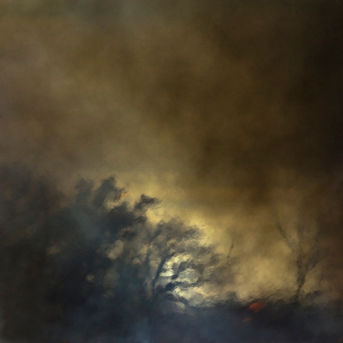Burn 48 © Jane Fulton Alt