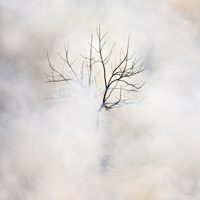 burnno-26 © Jane Fulton Alt